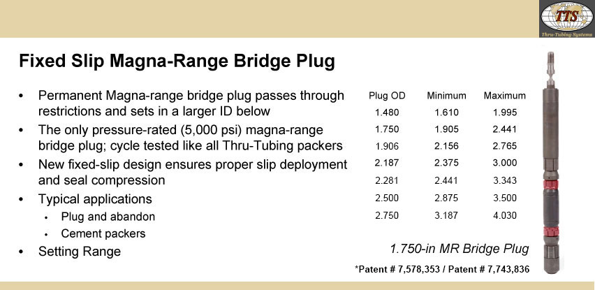 Fixed Slip Magna-Range Bridge Plug