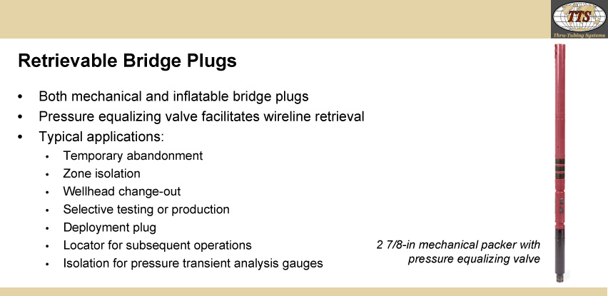 Retrievable Bridge Plugs