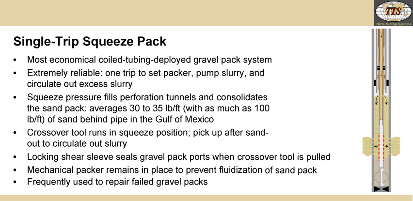 Single-Trip Squeeze Pack