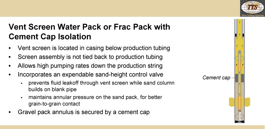Vent Screen Water Pack or Frac Pack with Cement Cap Isolation